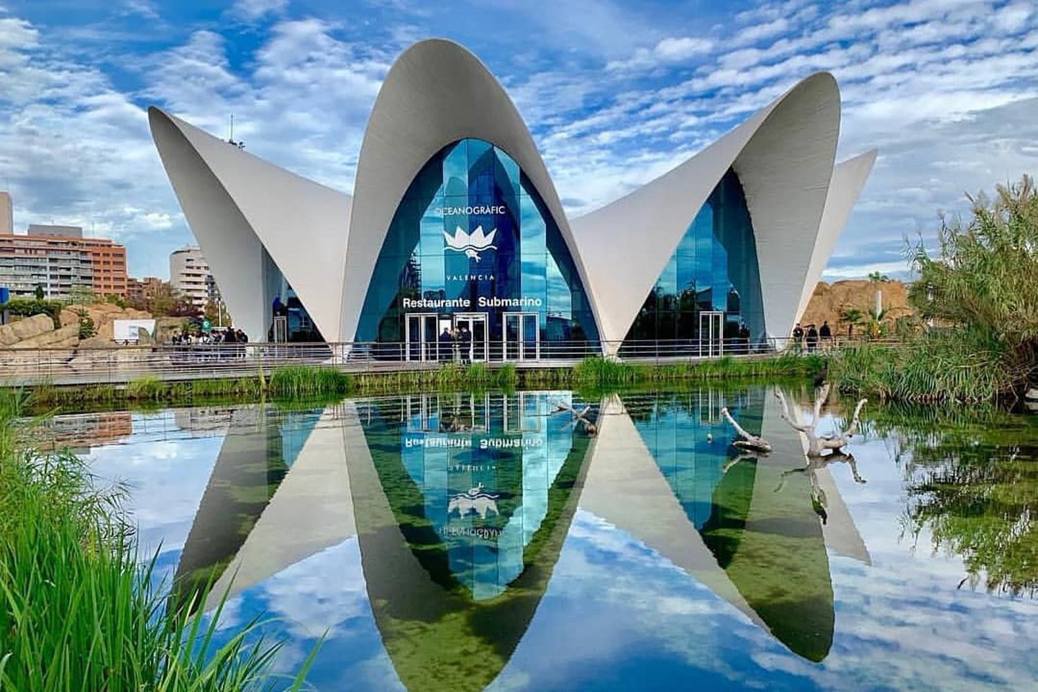 You can explore Europe's largest aquarium from home | Time ...