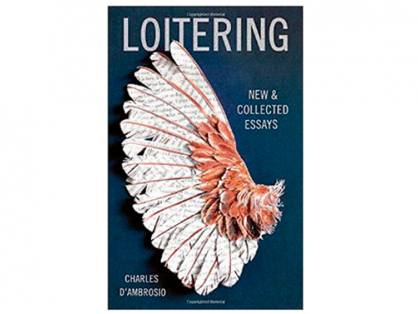 Loitering book review