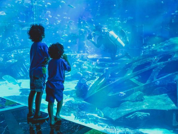 Huge aquarium to be built at Marassi Galleria