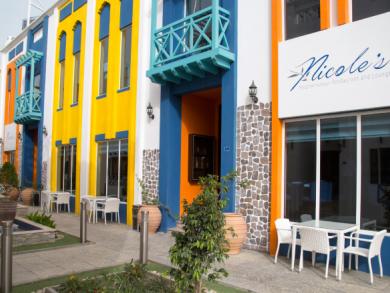 Nicole's Mediterranean Restaurant brunch review