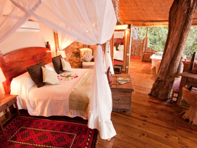 Best treehouse holidays
