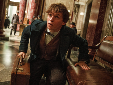 The rise and rise of Eddie Redmayne