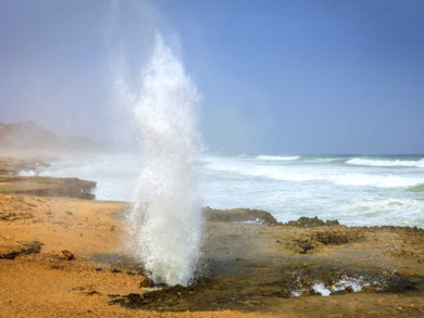 Go to Salalah during the khareef