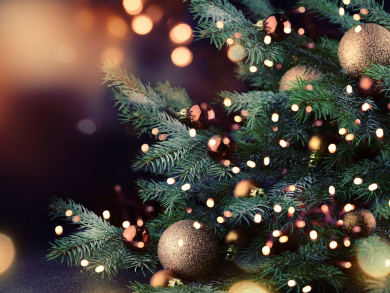 McGettigan's throwing Christmas tree lighting party with free mince pies