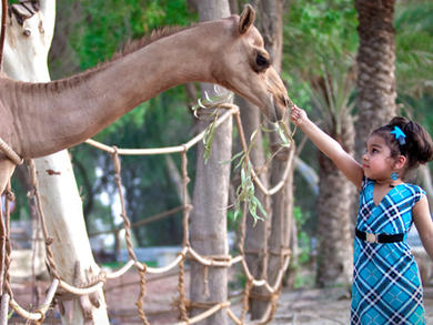 Family activities in Bahrain: Fun things to do with your kids in the Kingdom