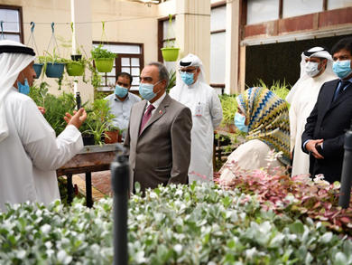 Bahrain's streets set to be beautified with one million seedlings