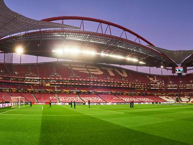 Bahrain's drive-in cinema to host UEFA Champions League screenings